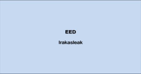 EED. Irakasleak