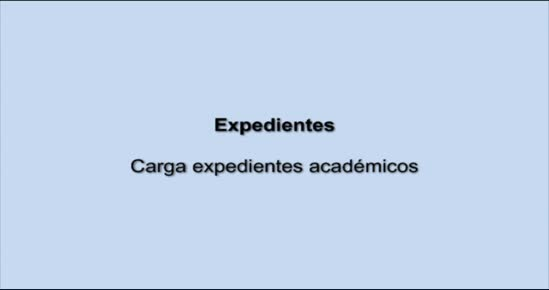 EXPEDIENTE. Carga de Expedientes